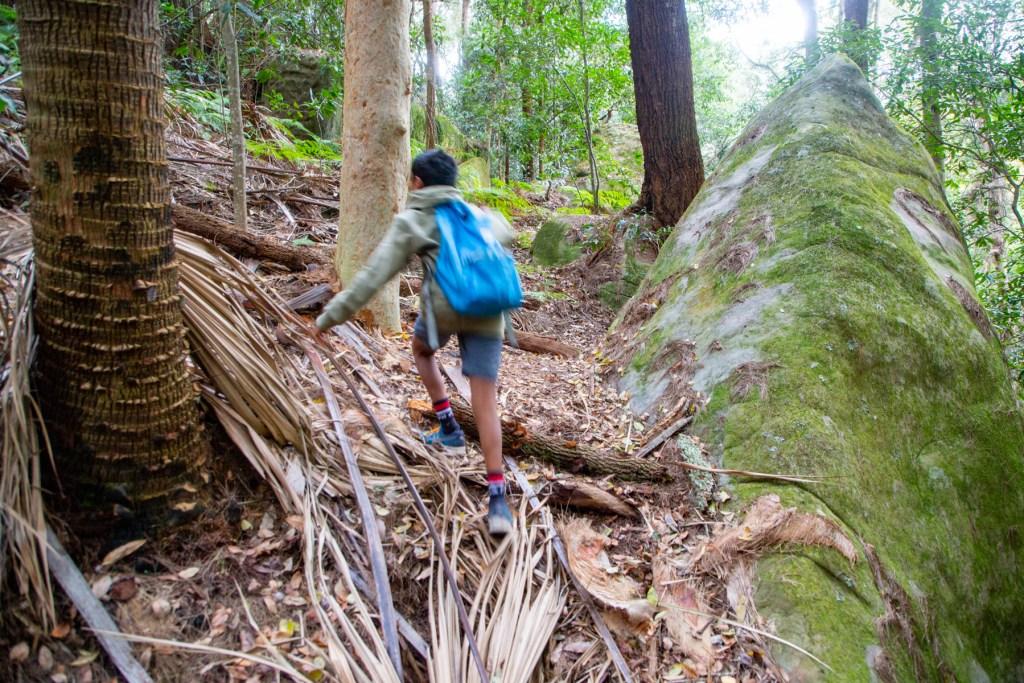 AWAT3243 LR Exploring Mullet Creek in Irrawong Reserve
