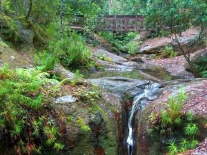 HPIM4453 LR Waterfalls Search