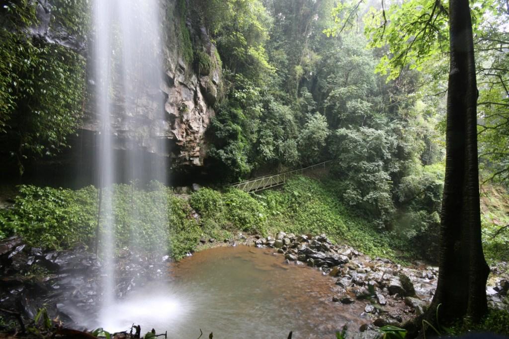 IMG 6054 LRP Crystal Shower Falls (Wonga Walk)