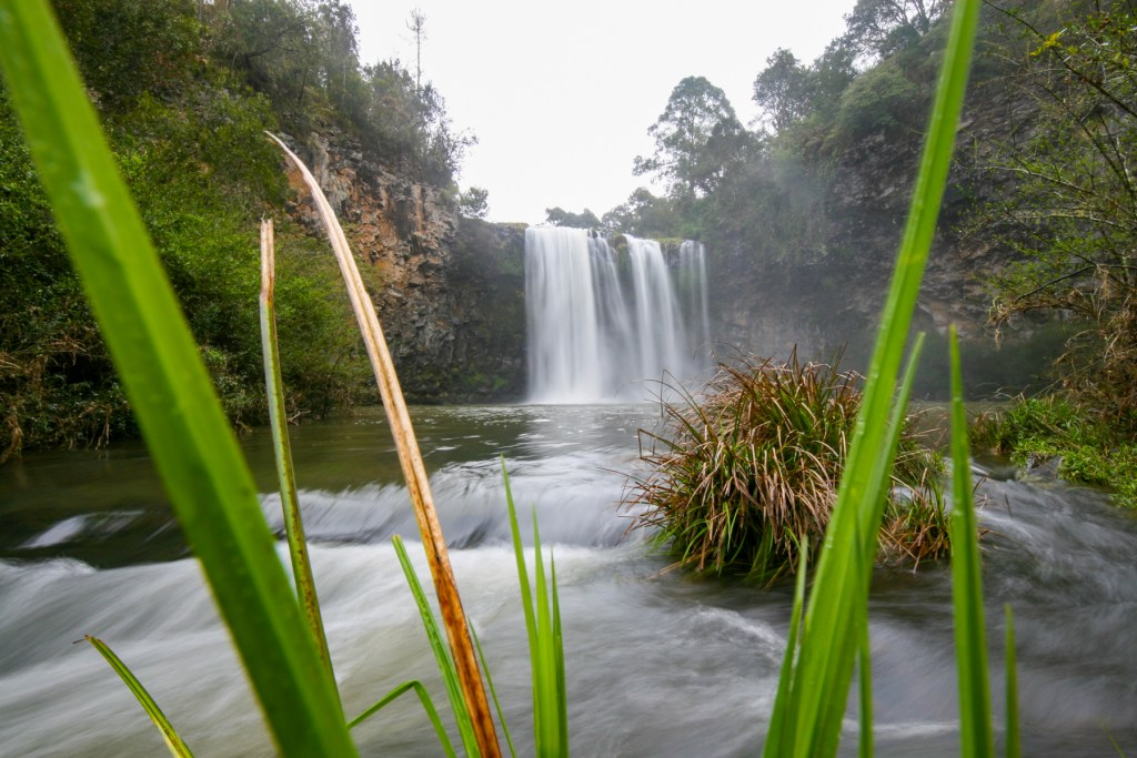 Dangar Falls (Dorrigo)