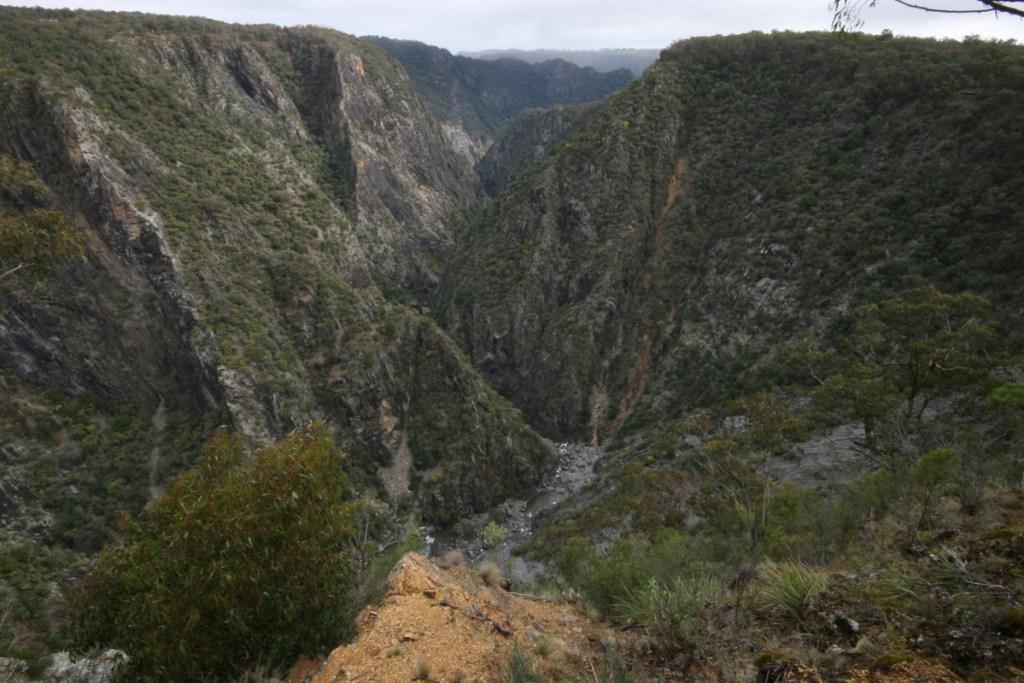 Gorge Lookout along Wollomombi Walking Track