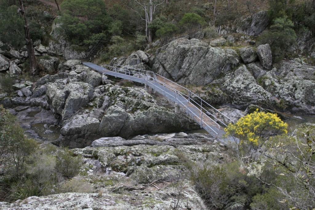 IMG 6133 LRP Wollomombi Walking Track
