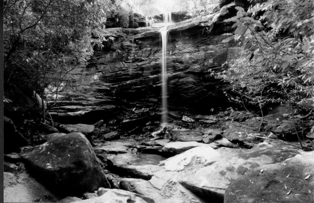 2nd Falls, Mullet Creek (Right Branch)