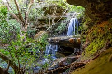AWAT5120 LR Babbage Falls (Moores Creek)