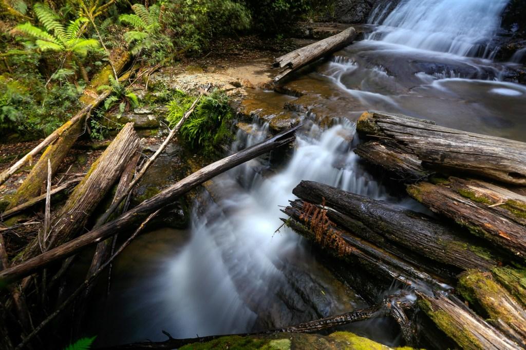 Lady Barron Falls (Mount Field)