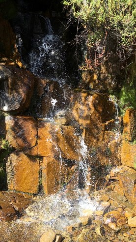 One of the many micro-waterfalls along the track