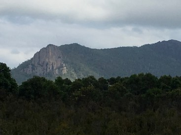 Cathedral Rock in the distance