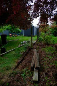 Our fence, almost all taken down, a few posts still standing