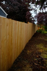 Our completed fence