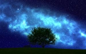 宇宙への願い方
