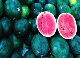 Melons, photo cred: Kaley Smith