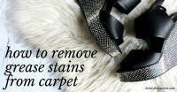 How to Remove Grease Stains from Carpet  Hilary Bernstein