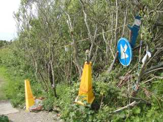 Footpath at Wheal Kitty, St Agnes