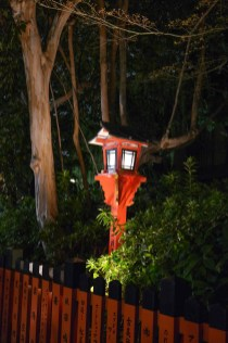 Beautiful lanterns illuminate the street