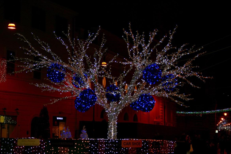 #festivityeverywhere