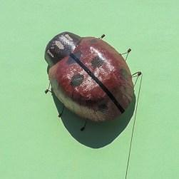 #ladybugart