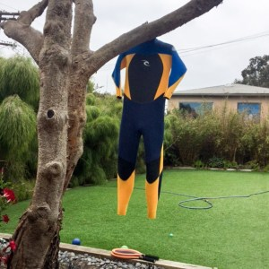 #wetsuit