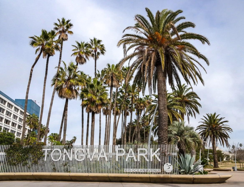 #tongvapark