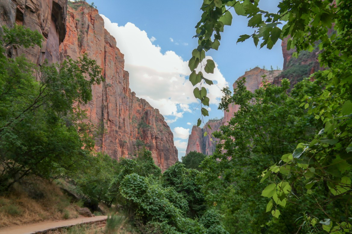 Zion National Park with Kids #zionnationalpark