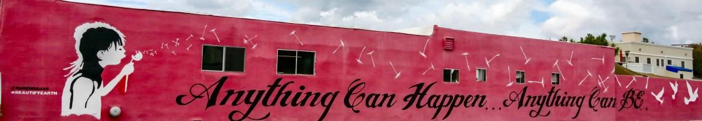 Street art Los Angeles California #anythingcanhappenanythingcanbe