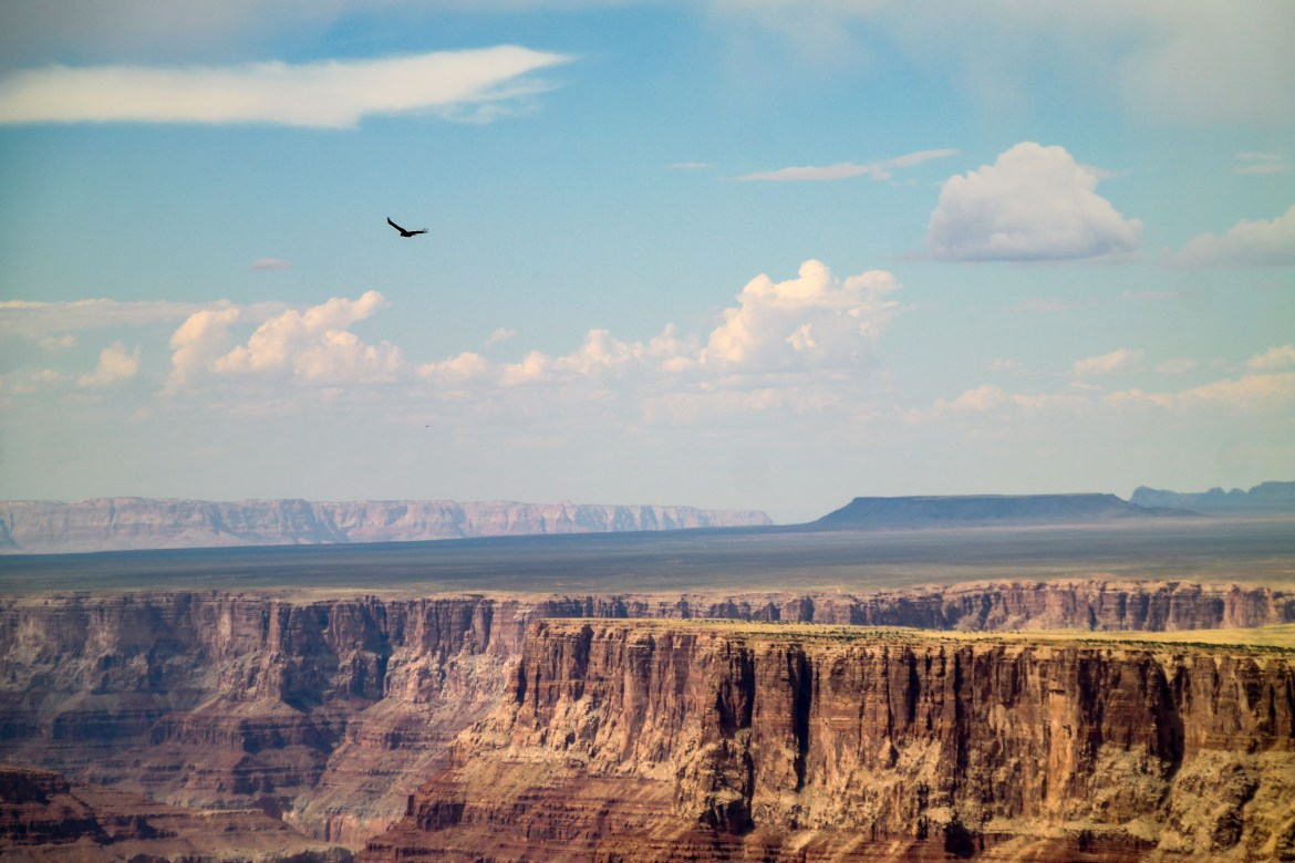 Grand Canyon National Park Arizona #grandcanyonwithkids