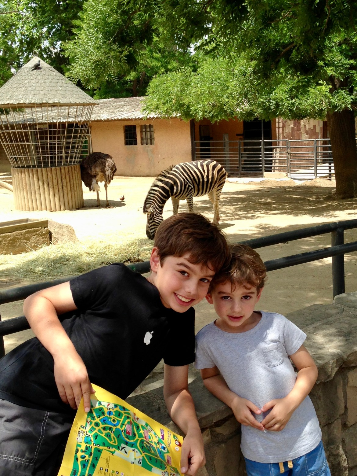 Things to do with kids in Barcelona