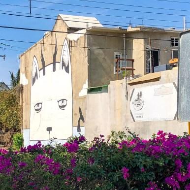Puerto Vallarta Mexico Street Art