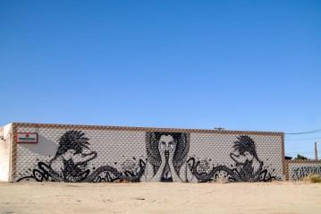 Salton Sea Desert Shores