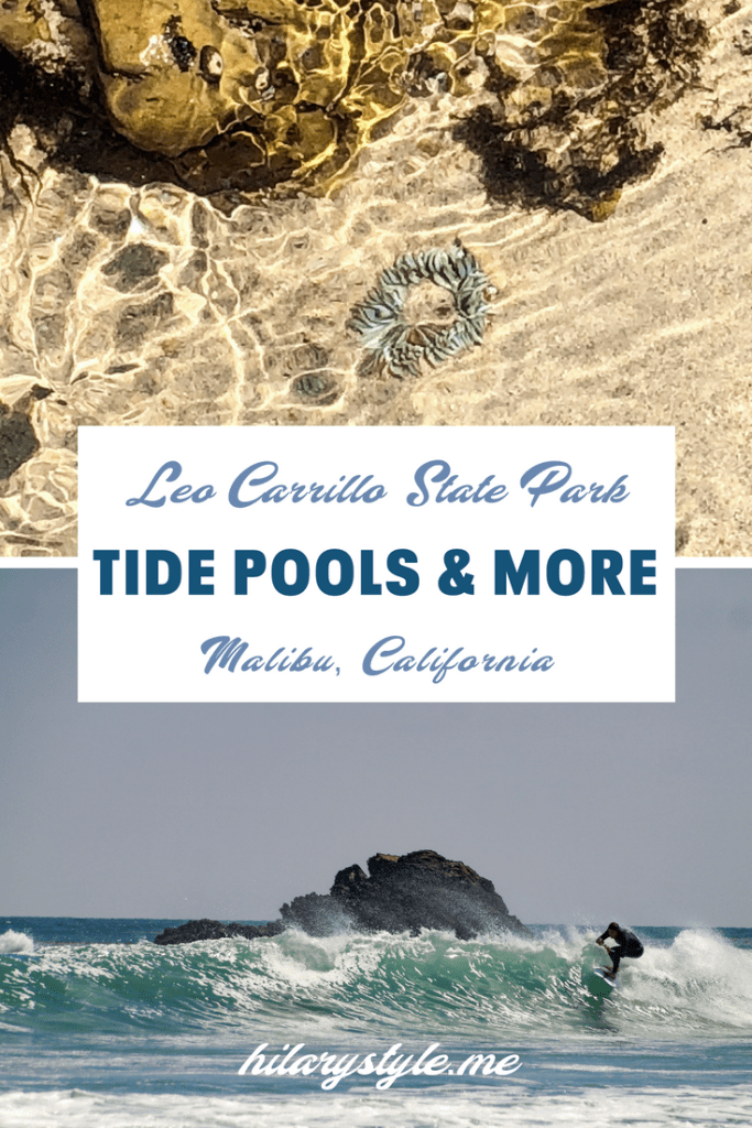 Explore family friendly Leo Carrillo State Park Malibu California #thingstodoinmalibu #tidepools #leocarrillotidepools #thingstodowithkidsinLA #familybeachdayLA