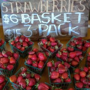 Swanton Berry Farm Pescadero California West Coast Road Trip