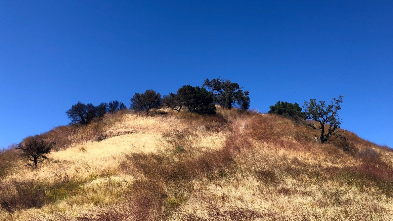 Malibu State Creek Park Malibu Los Angeles California