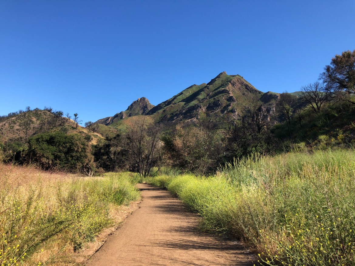 Malibu State Creek Park Malibu Los Angeles California #malibu #thingstodoinla