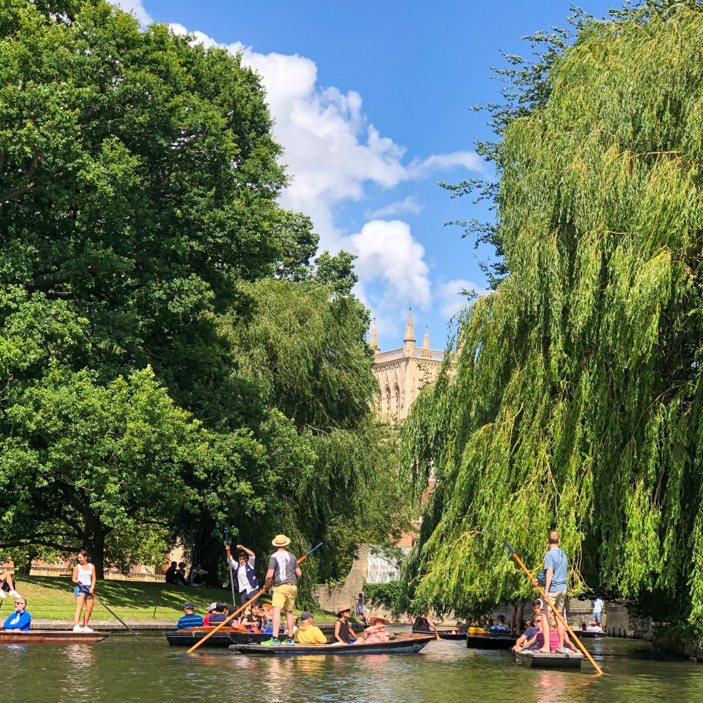 Punting on The River Cam Cambridge England 2019-8570
