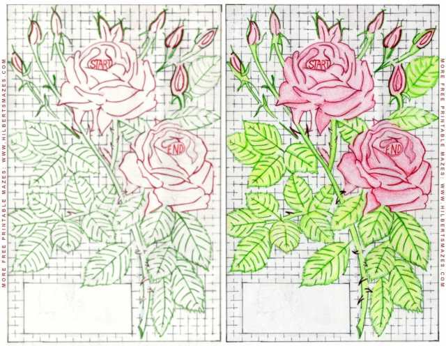 Free Printable Hand Drawn Valentine Rose Maze. Easily downloadable printable PDF format. Great Mazes for both kids & adults very challenging but fun.