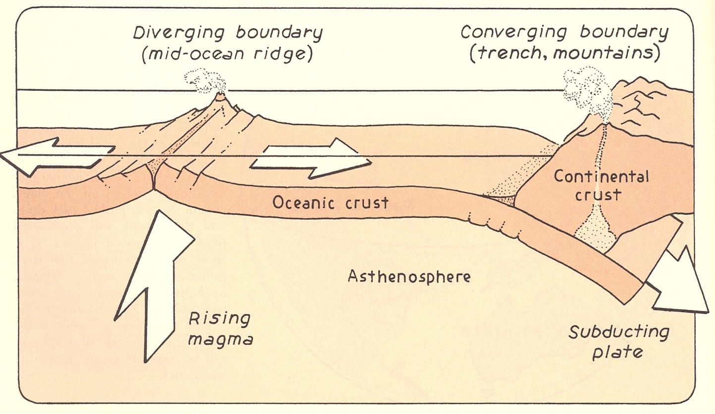 Simple Ocean Floor Diagram