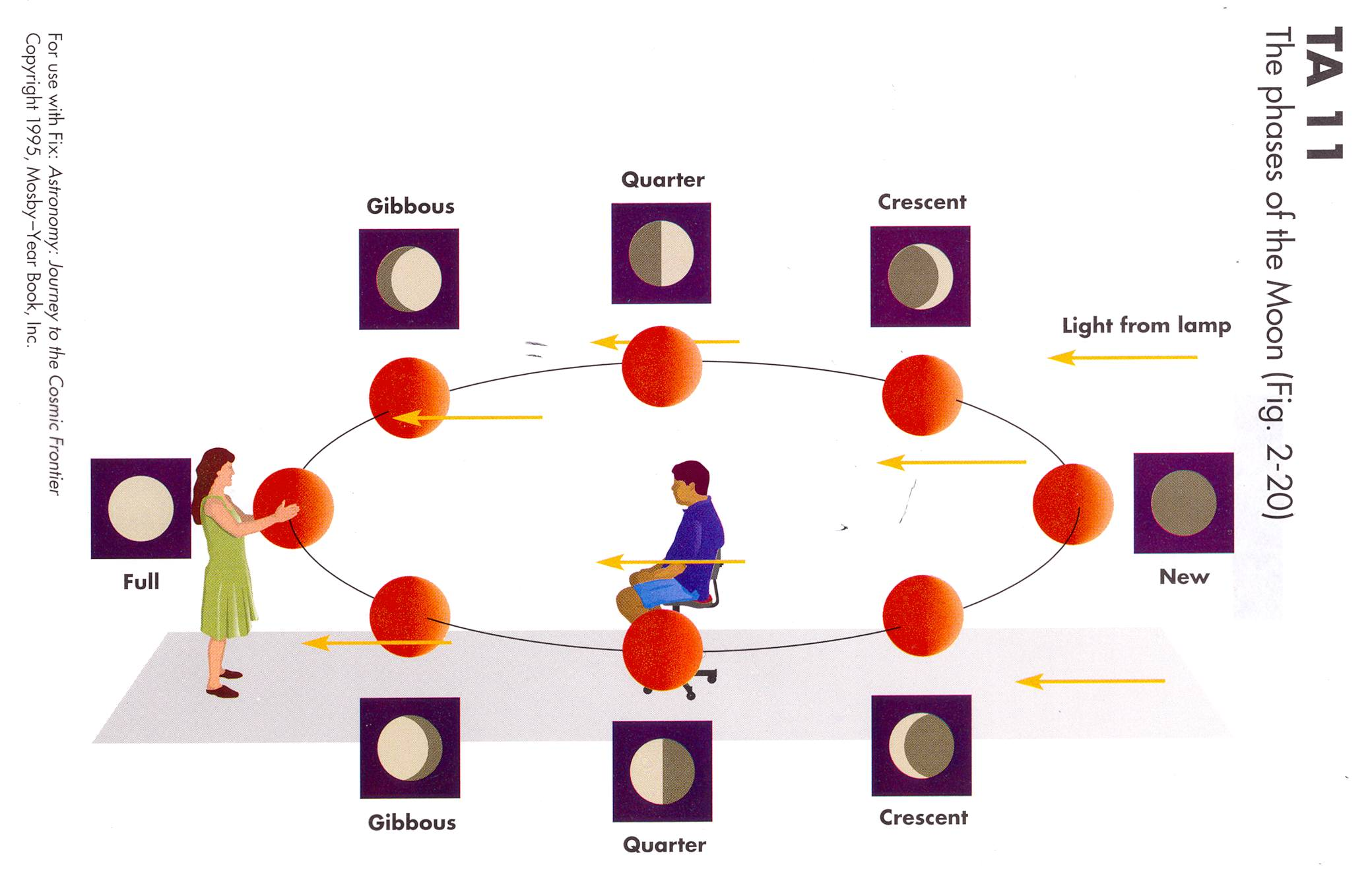 phases of the moon diagram to label polaris trailblazer 250 carb oklahoma space stuff