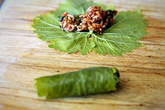 grape leaf dolma