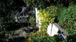 wpid-2011-09-23-12.10.30.jpg