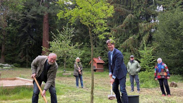 """""""Baum des Jahres"""" für Kindererlebniswald"""
