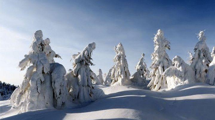 Vom Staubkorn zum Eiskristall: So entsteht Schnee