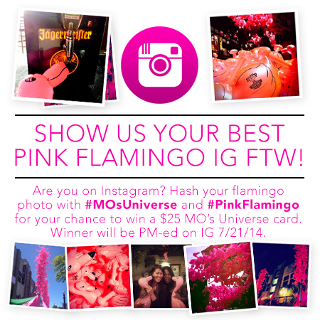 Instagram Pink Flamingo Contest