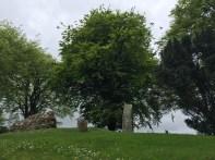 Hill of Tara cemetery