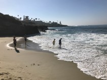 Beach in La Jolla