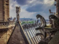 Notre Dame angel and gargoyles