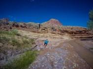 Sulphur Creek trail