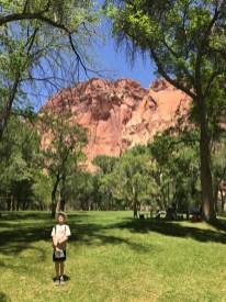 Park in Fruita