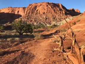 Chimney Rock trail