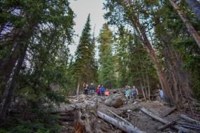 Yellowstone Falls hike
