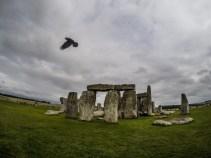 The rook of stonehenge