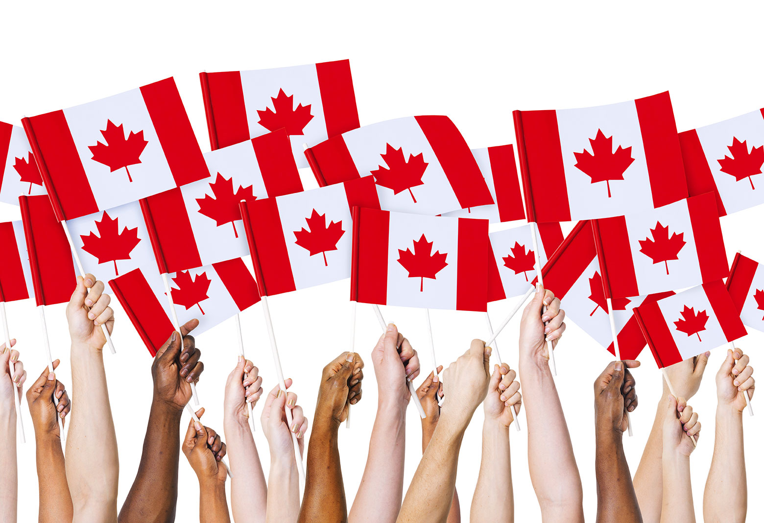 an overview of the economic problems with high level of immigration of canada Unjustified immigration levels against public's wishes  since 1990 has been far too high in fact, canada's intake is the highest per capita in the world.